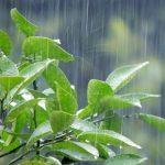 6つのコツで雨音を弾く!ショパン『雨だれの前奏曲(プレリュード)』の難易度と弾き方とは?