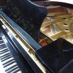 子供から大人まで皆が楽しめる!耳に残るピアノ名曲10選・難易度順~発表会にもおすすめ!~