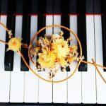自由に表現!ショパン『ノクターン第1番op.9-1』弾き方のコツと難易度