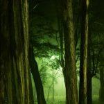 感情豊かに!ショパン『ポロネーズ第1番嬰ハ短調op.26-1』弾き方と難易度~無料楽譜