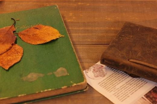 夏目漱石『それから』あらすじ・名言・感想~すべてを失った先にあるのは、新たな出発?それとも…