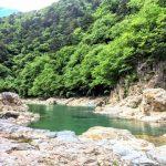 宮沢賢治『やまなし』あらすじ・名言・感想~文字を通して覗き見る、美しい谷川・水の底の世界